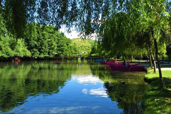 """Natyrë si """"e pikturuar"""", Pogradeci, ky destinacion turistik që ..."""